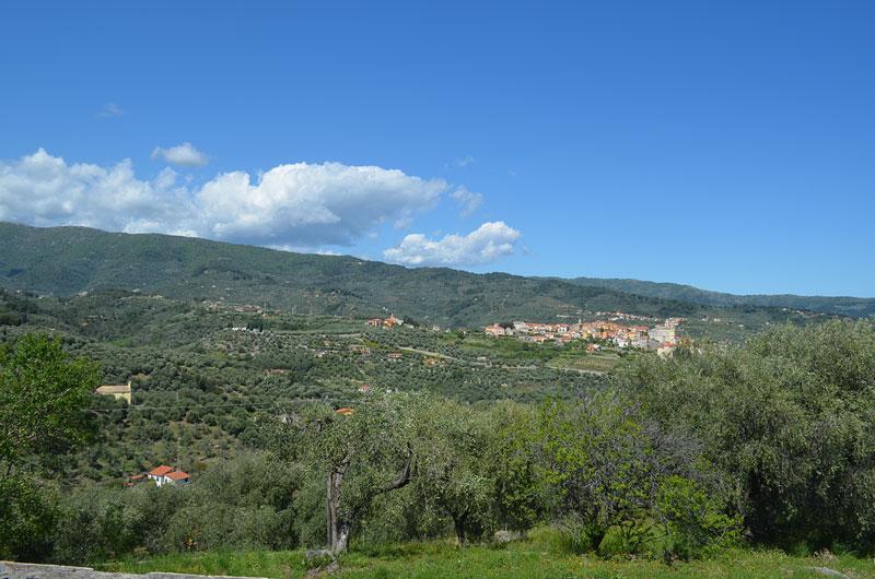 villa-catella38